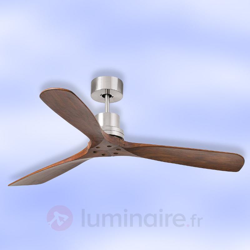 Ventilateur de plafond Lantau avec pales en bois - Ventilateurs de plafond