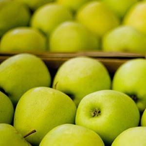 FruitCal - Nos produits