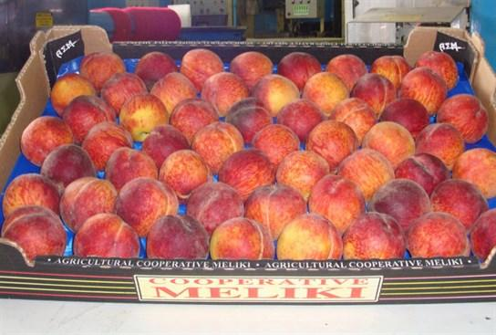 PEACHES - Fresh and Delicious from Greece