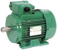 induction motors with permanent capacitor - LS P Single-phase TEFV - 0.06 to 1.5 kW
