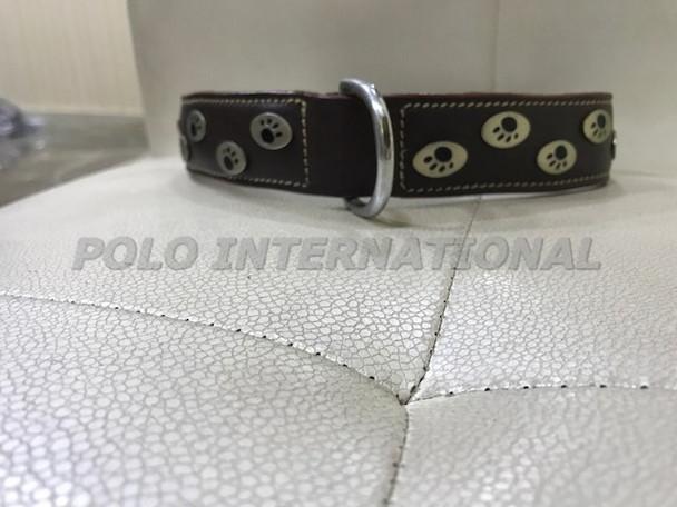 Dog collar - leather dog collar