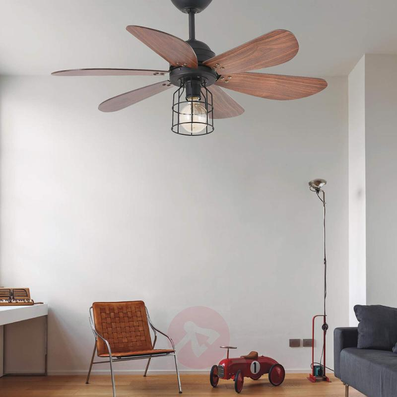 Light with a cage design- ceiling fan Chicago - fans