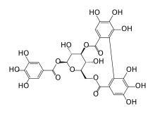 Tannin(Tannic Acid) - null
