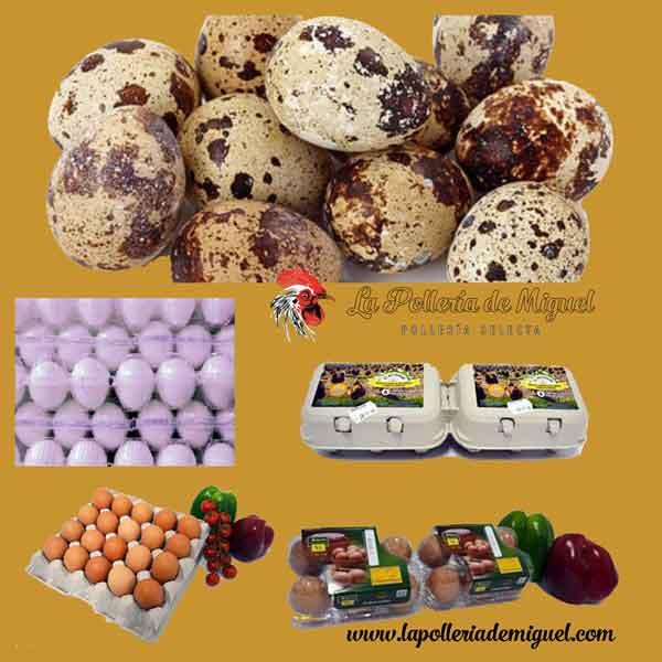 Gran Variedad de Huevos a domicilio