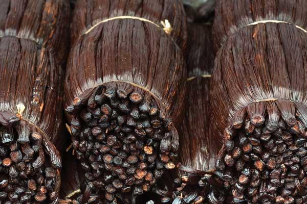 Extrait Vanille Bourbon Madagascar - extraits et concentrés