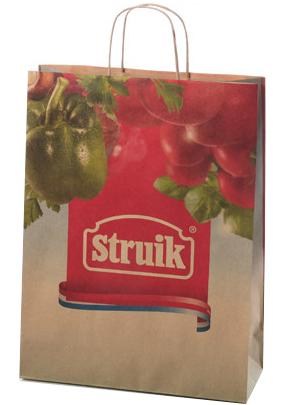 Printed Paper shopping Hand Bag