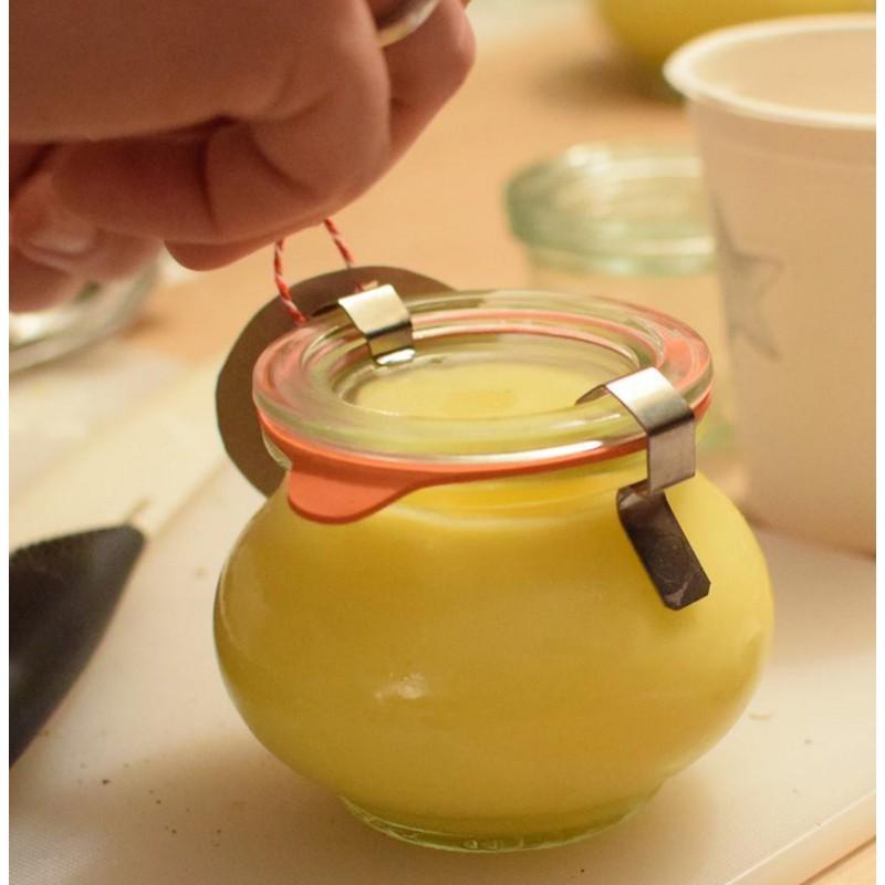 Lot de 24 Clips / crochets inox  - pour fermeture des bocaux WECK®