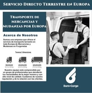 Transporte terrestre en Furgonetas en Europa - Servicio Urgente en Furgonetas de 10 a 22 mts3