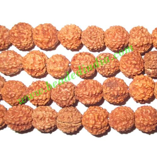Rudraksha Beads String (mala) 6 Mukhi (six face), size: 7.5m - Rudraksha Beads String (mala) 6 Mukhi (six face), size: 7.5mm