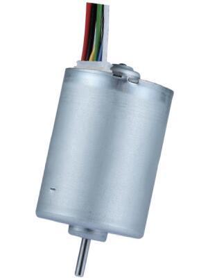 Brushless DC Motor BLDC2838 - Brushless DC Motor