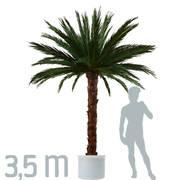 "Echtblatt Deko-Palme ""Areca"" 3,5 m Höhe - null"