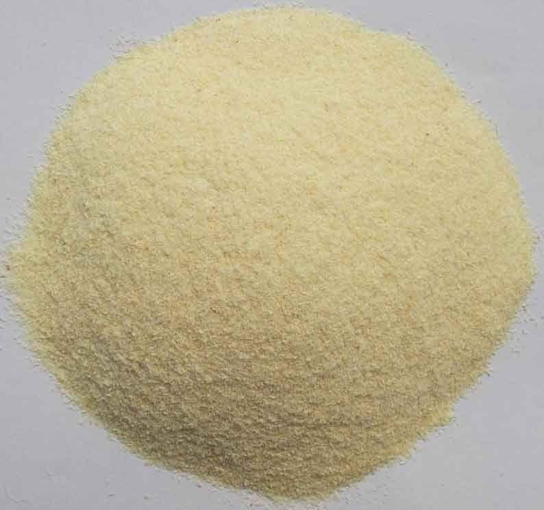 Indian Garlic Powder Supplier