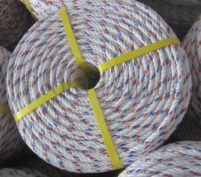 Ropes - PP Danline Rope