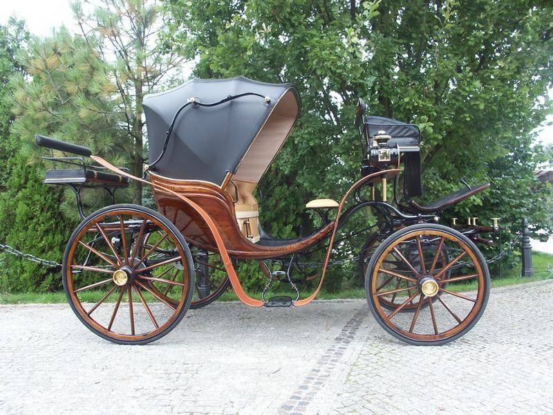 Phaeton, Spider, Dog Cart - Kutschen