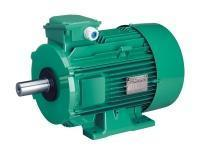 Three-phase induction motors with cast iron frame  - LS - IE1 0.045 to 200 kW