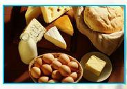 Fromages Europe  - exportation de fromages