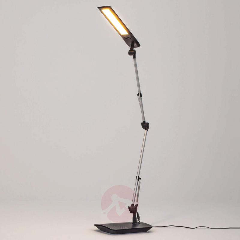 Felipe Led Desk Lamp With Clip On Base Indoor Lighting