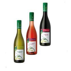 Bouteilles PET - BOUTEILLE VIN Bourgogne 750ml
