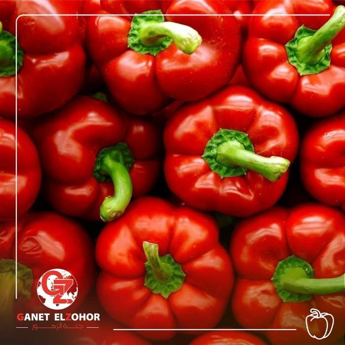 Egyptian Bell Peppers - Organic