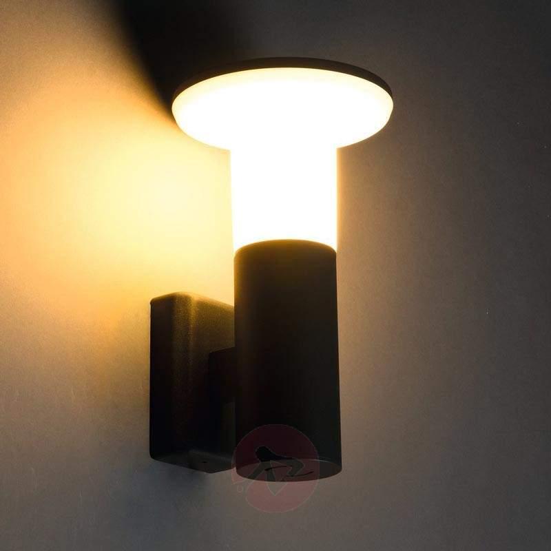Attractive ALPA-T outdoor wall light - Wall Lights