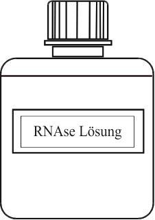 RNASepar Lösung -