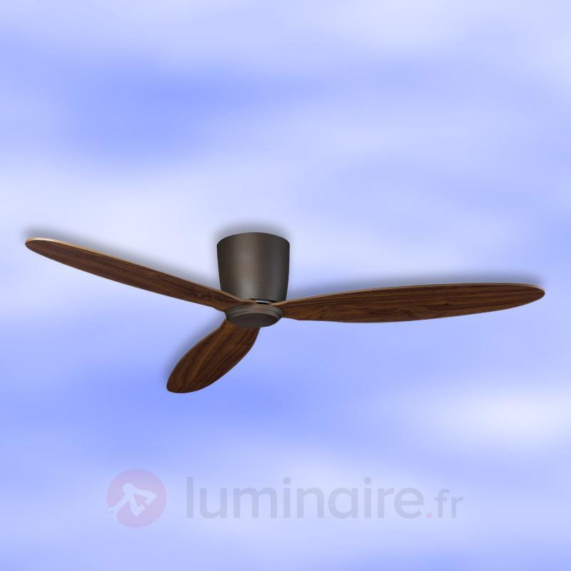 Ventilateur de plafond plat Eco Plano, bronze - Ventilateurs de plafond modernes