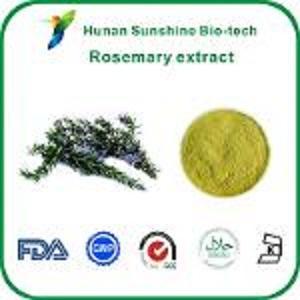 Extrait de romarin / acide labiaténique