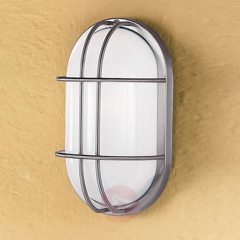 Dana Outside Wall Light Oval Stainless Steel - stainless-steel-outdoor-wall-lights