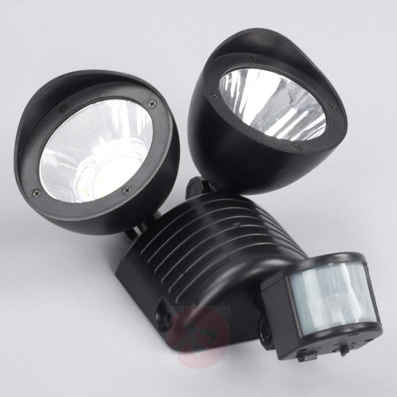 Two-bulb LED solar spotlight Tamar - outdoor-led-lights