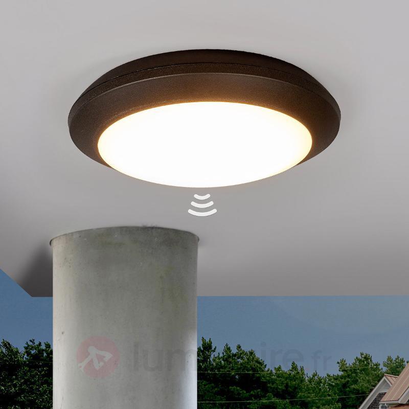 Plafonnier Umberta à détecteur, noir, 11W, 3000K - Plafonniers avec détecteur