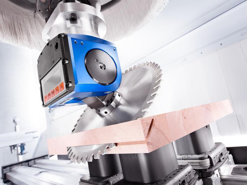 Schwenkkopf FLEX D (manuell verstellbar) - CNC Aggregat zur Bearbeitung von Holz, Verbundwerkstoff und Aluminium