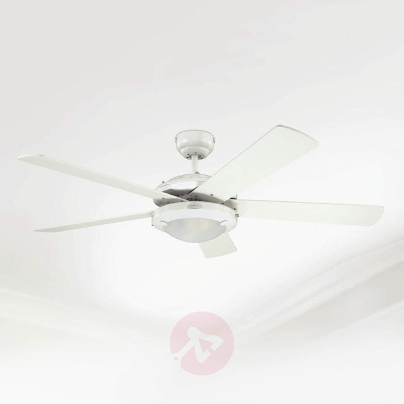 Comet 2 ceiling fan for all-year use - fans