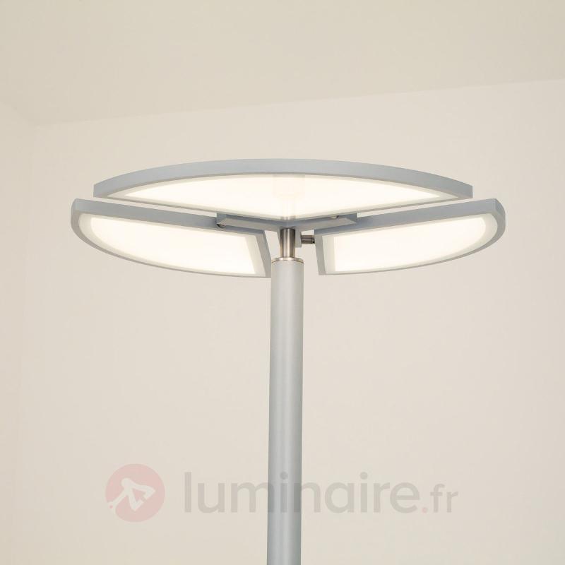 Lampadaire LED Aurela avec éléments orientables - Lampadaires LED