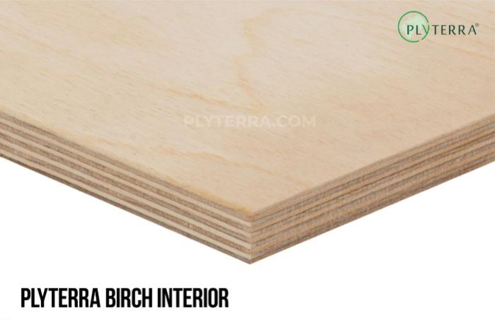 Plyterra Birch Interior - High-quality plywood for interior use