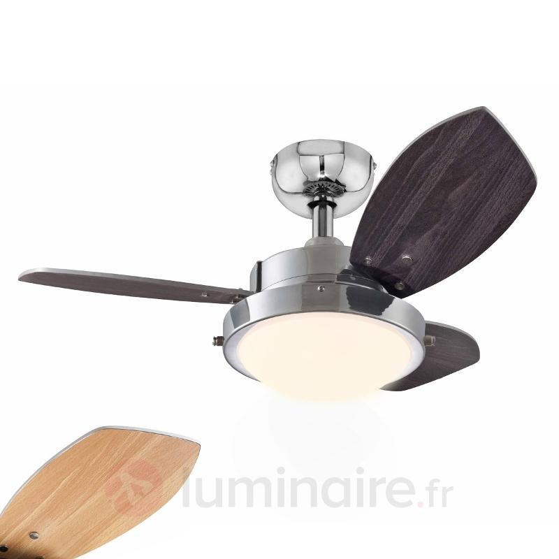 Ventilateur de plafond lumineux WENGUE - Ventilateurs de plafond modernes