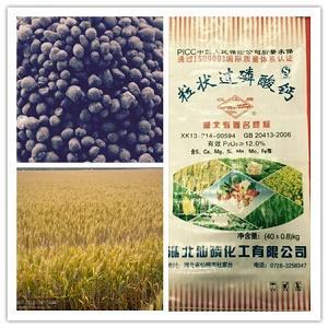 «Карточка Hanjiang» зернистый суперфосфат