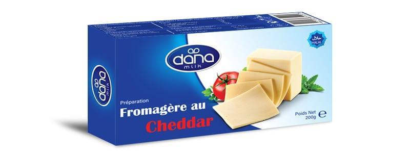 BLOQUES DE QUESO CHEDDAR PROCESAROS - Bloques de queso de 200gr