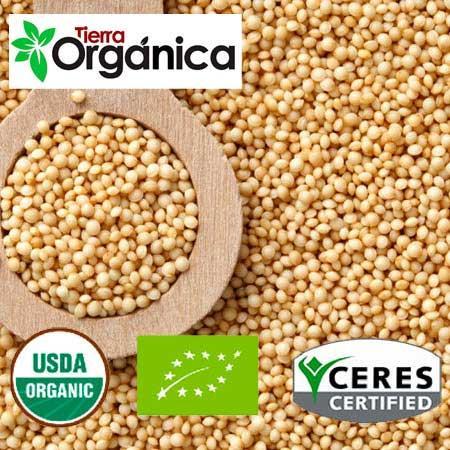 Amaranth - Grains, Flakes, Flour (organic & conventional)