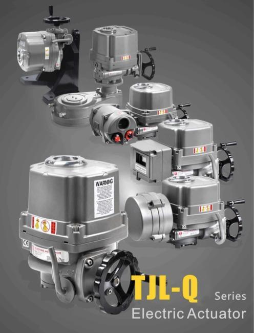 Electric Actuator - Electric Actuator