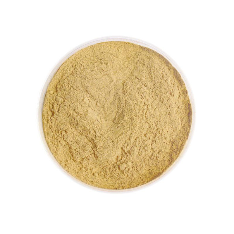 Carica papaya Extract Powder - Fruit&Vegetable Powder