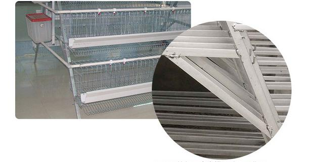 Chicken broiler cages - Animal Cages