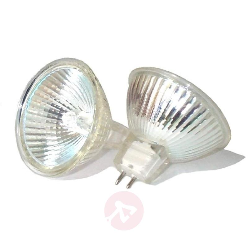 GU5.3 MR16 50 W halogen bulb 8,000 hour lifespan - light-bulbs