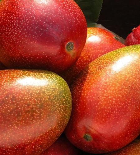 Mangue - fraiche Rungis