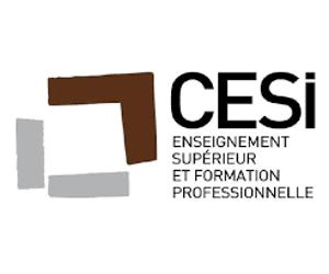 CESI - Enseignement supérieur et formation professionnelle