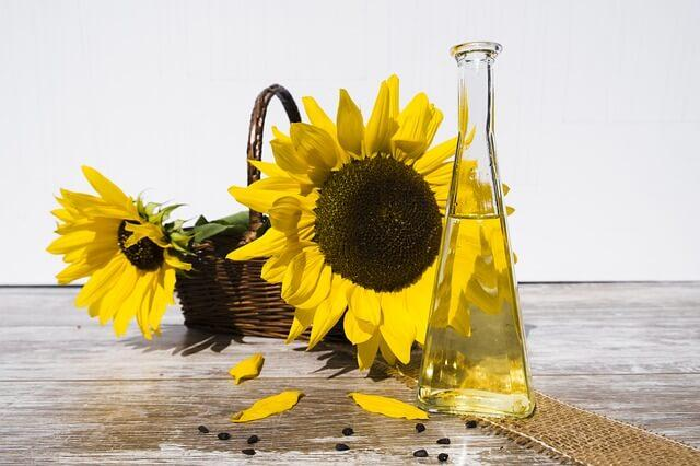 Sunflower oil Export