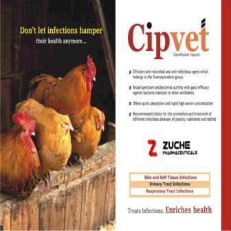 Veterinary Ciprofloxacin Injection  - Veterinary Ciprofloxacin Injection