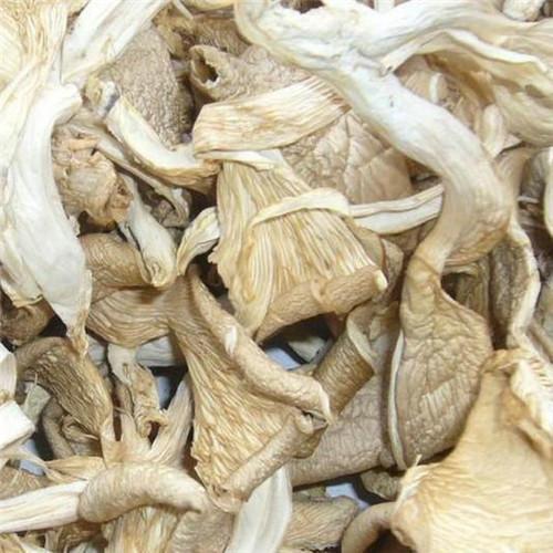 oyster mushroom strip