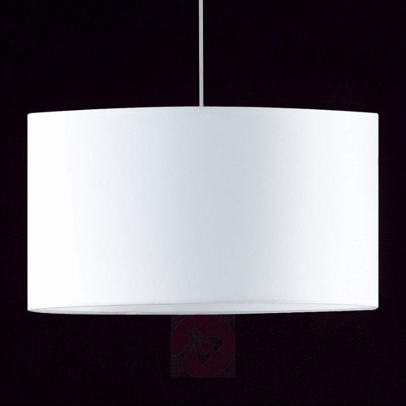 Elegant Loft hanging light - indoor-lighting