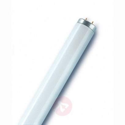 G13 T8 18W 880 sky white fluorescent bulb LUMILUX - light-bulbs