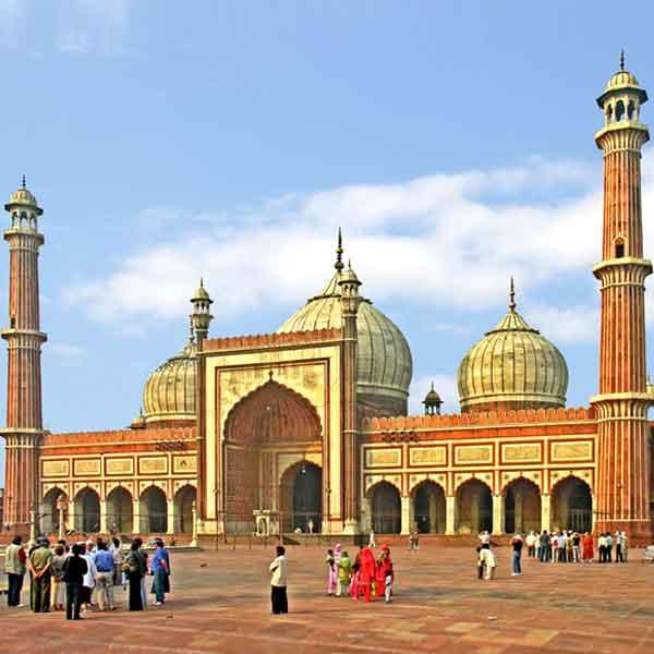 7N 8D Jaipur, Ranthambore (Tigers), Agra (Taj Mahal) Tour    - 1N Delhi-2N Jaipur-2N Ranthambhore-1N Agra-1N Delhi (By Car)